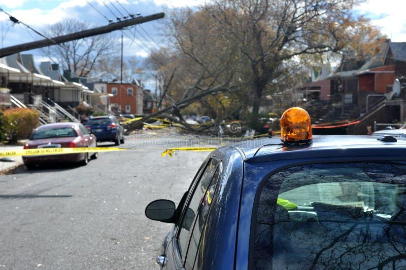 Bäume und elektrische Pole glaubten unten zu Boden lizenzfreies stockbild