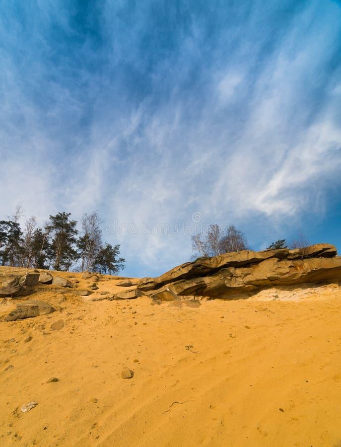 Bäume und Felsen auf einem Sand stockfoto