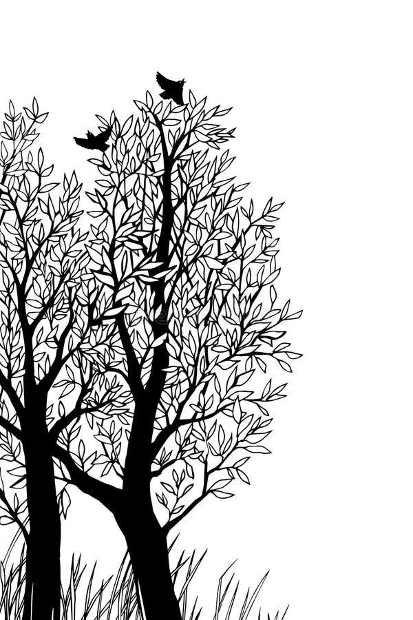 Bäume und hochfliegende Vögel ein paar Niederlassungen lizenzfreie abbildung