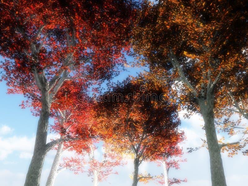 Bäume von unterhalb 3 lizenzfreie abbildung