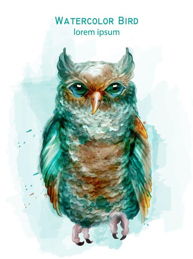 Błękitnej sowy kolorowa Wektorowa akwarela Egzotyczny ptak odizolowywający na biel royalty ilustracja