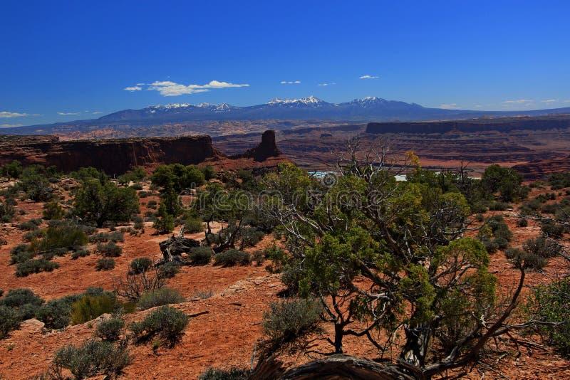 Bågenationalpark i Moab, Utah arkivbilder
