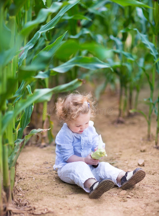 Bébé avec les cheveux bouclés dans le domaine jouant avec du maïs photo stock