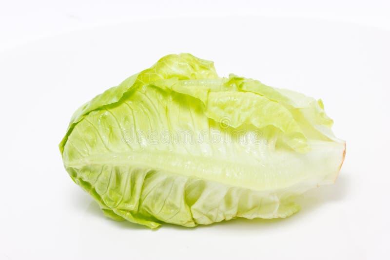 Bébé Cos Lettuce. images stock