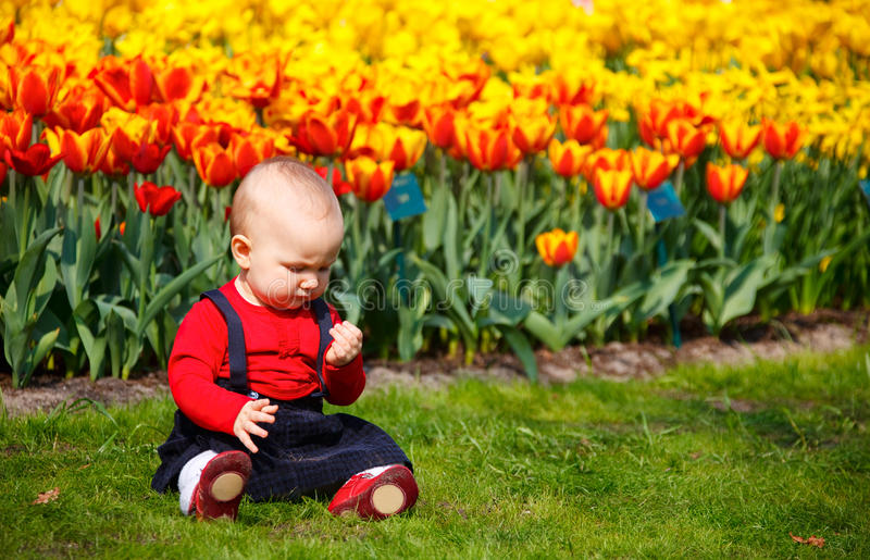 Bébé dans le jardin image libre de droits