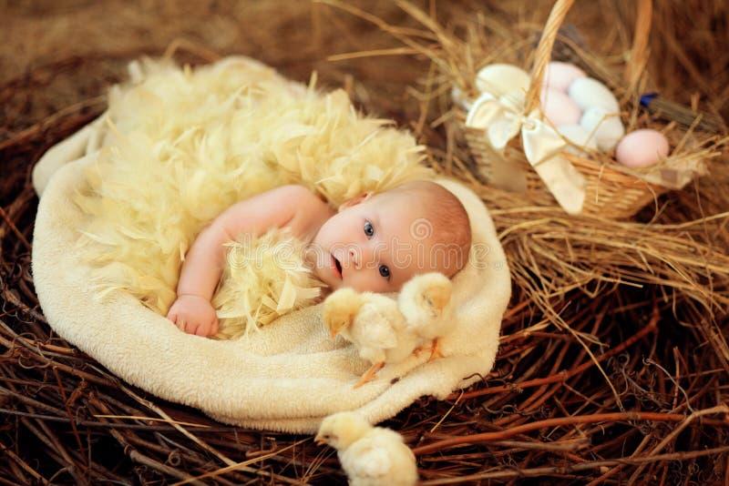 Bébé dans le nid de Pâques images libres de droits