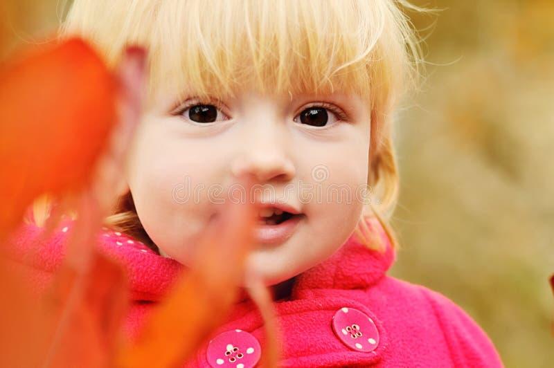 Bébé dans les buissons image libre de droits
