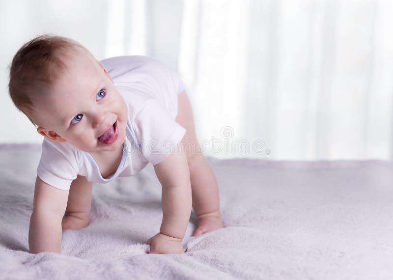 Bébé garçon drôle sur des genoux essayant de marcher Enfant infantile impressionnant sur tous les fours Enfant en bas âge de sour image libre de droits