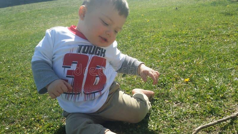 Bébé garçon jouant dans l'herbe d'été photos stock