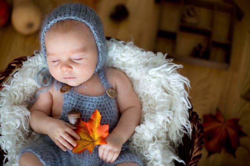 Bébé garçon nouveau-né mignon, dormant avec des feuilles d'automne dans un panier a photo libre de droits
