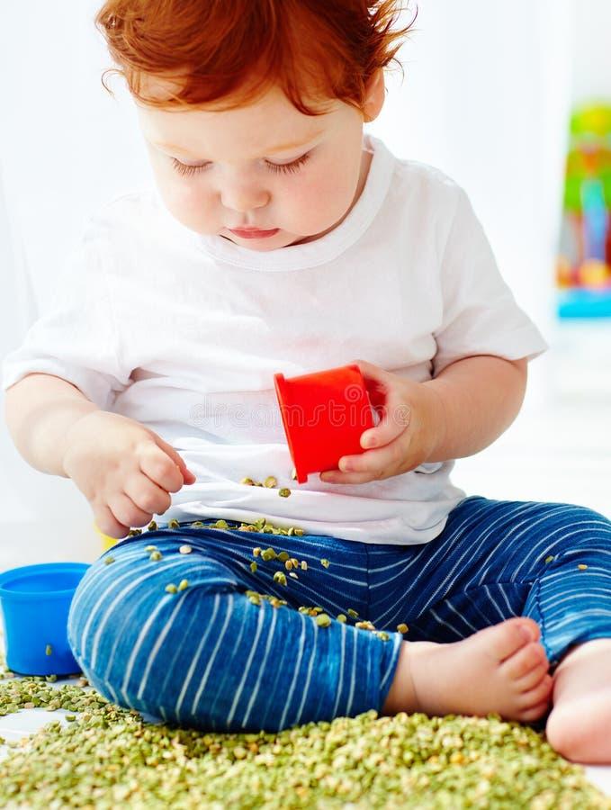 Bébé garçon roux mignon développant des qualifications fines de motilité en jouant avec les pois à la maison image stock