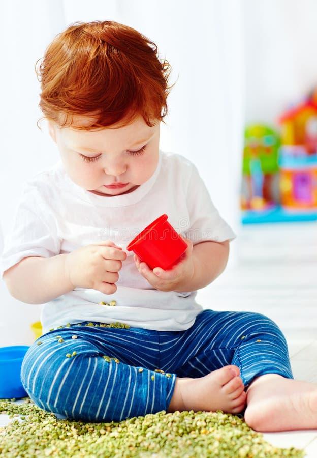 Bébé garçon roux mignon développant des qualifications fines de motilité en jouant avec les pois à la maison images stock