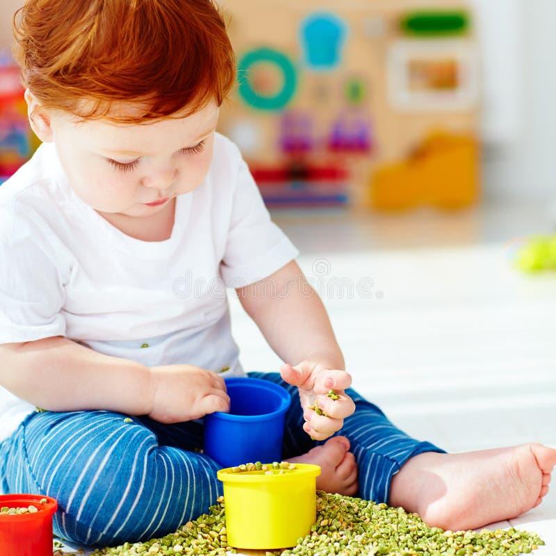Bébé garçon roux mignon développant ses qualifications fines de motilité en jouant avec les pois à la maison photographie stock