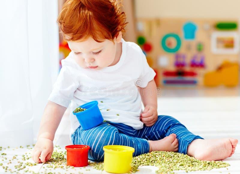 Bébé garçon roux mignon développant ses qualifications fines de motilité en jouant avec les pois à la maison image stock