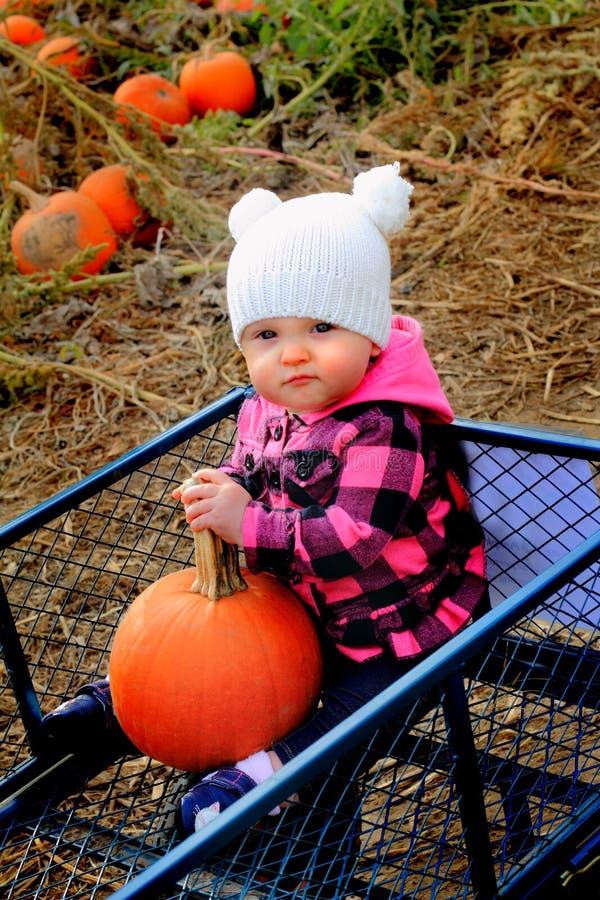 Bébé heureux dans le chariot de correction de potiron photos libres de droits