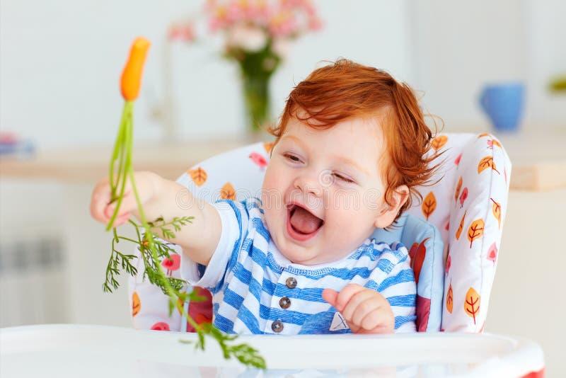 Bébé infantile heureux mangeant la carotte fraîche tout en se reposant dans haut Chai photographie stock libre de droits