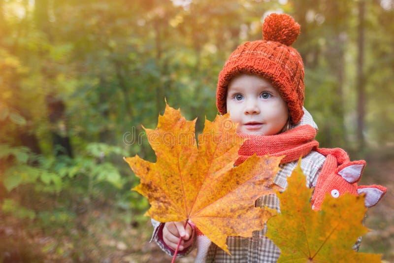 Bébé mignon dans des vêtements d'automne l'enfant dans les chapeaux tricotés et l'écharpe tenant l'érable orange part photographie stock