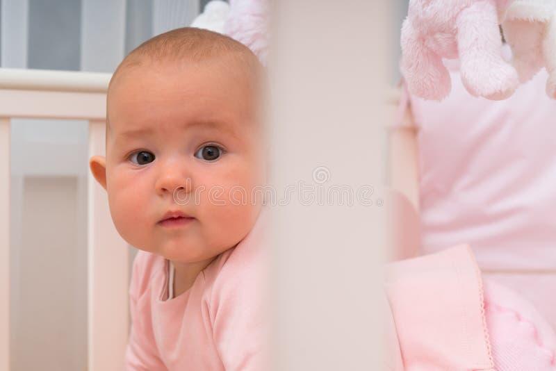 Bébé mignon dans le berceau, regardant la caméra photo libre de droits