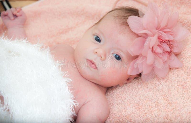 Bébé nouveau-né de portrait photographie stock libre de droits