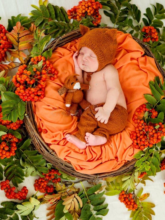 Bébé nouveau-né dormant dans un panier photos libres de droits