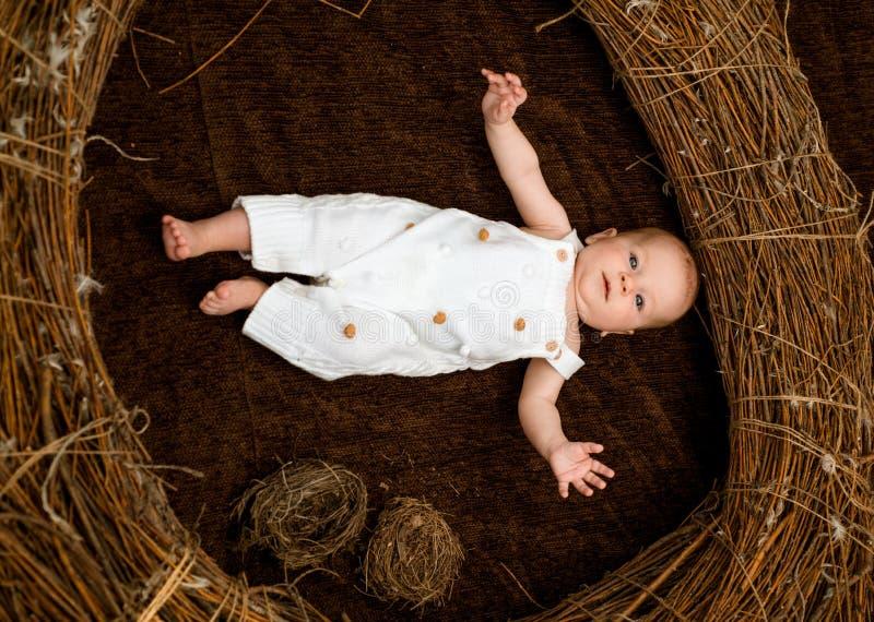Bébé nouveau-né sur des soins de santé Bébé ou garçon nouveau-né éveillé dans la huche Santés de l'enfant et croissance Émotif et photographie stock
