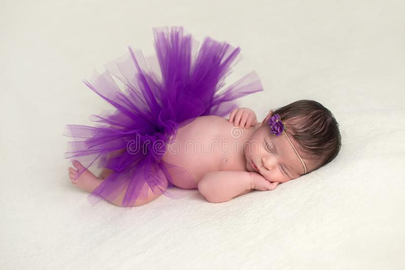 Bébé nouveau-né utilisant un tutu pourpre images libres de droits