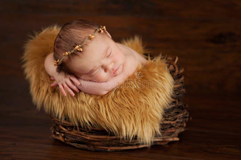 Bébé nouveau-né utilisant une couronne de brindille photo stock