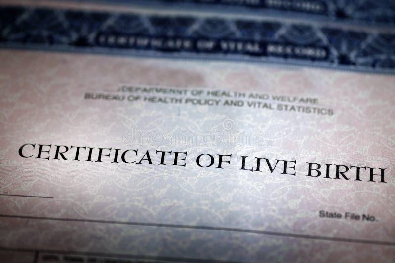 Bébé officiel de papier de forme d'acte de naissance né photo libre de droits