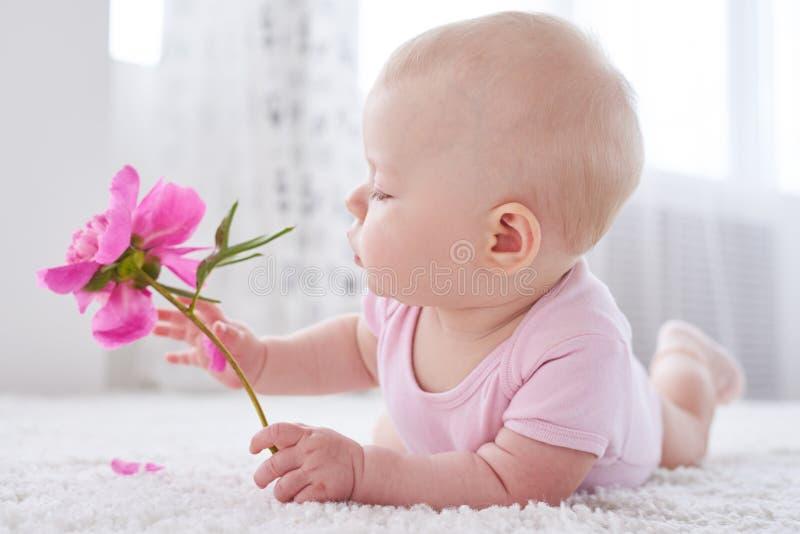 Bébé tenant une pivoine image libre de droits