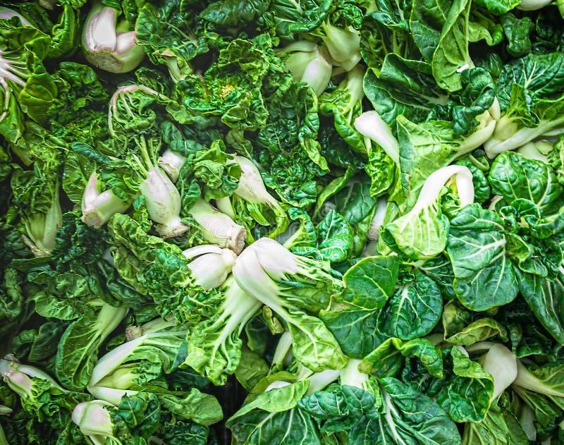 Bébé vrai régulier Bok Choy ou connu comme Siu Tau Pai Vegetable Mini Chinese White Cabbage images stock