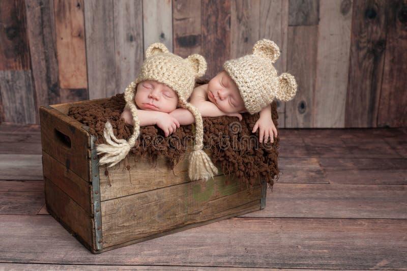 Bébés garçon jumeaux dormant dans une caisse en bois image stock