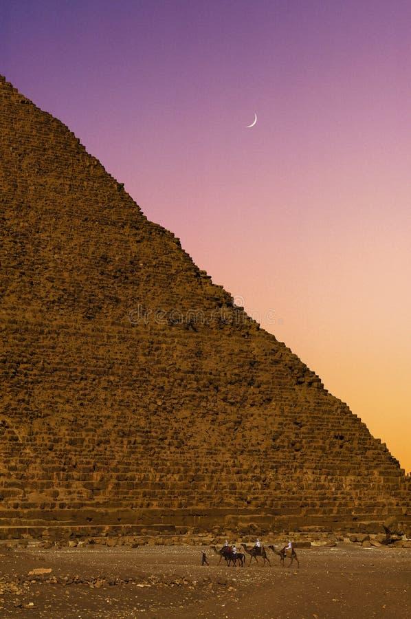Bédouins sur des chameaux contre la pyramide en Egypte  photographie stock libre de droits