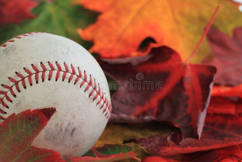 Béisbol del otoño fotos de archivo