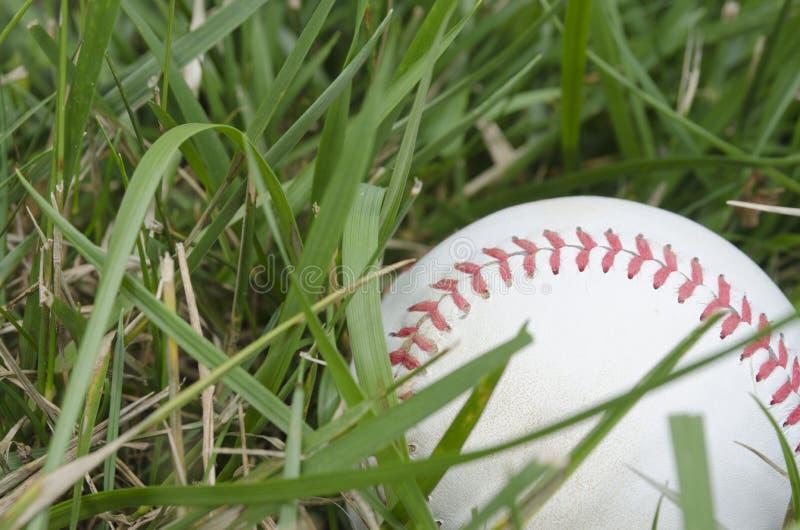 Béisbol en hierba imágenes de archivo libres de regalías