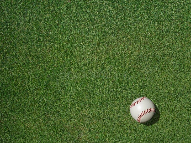Béisbol en hierba del césped de los deportes imágenes de archivo libres de regalías