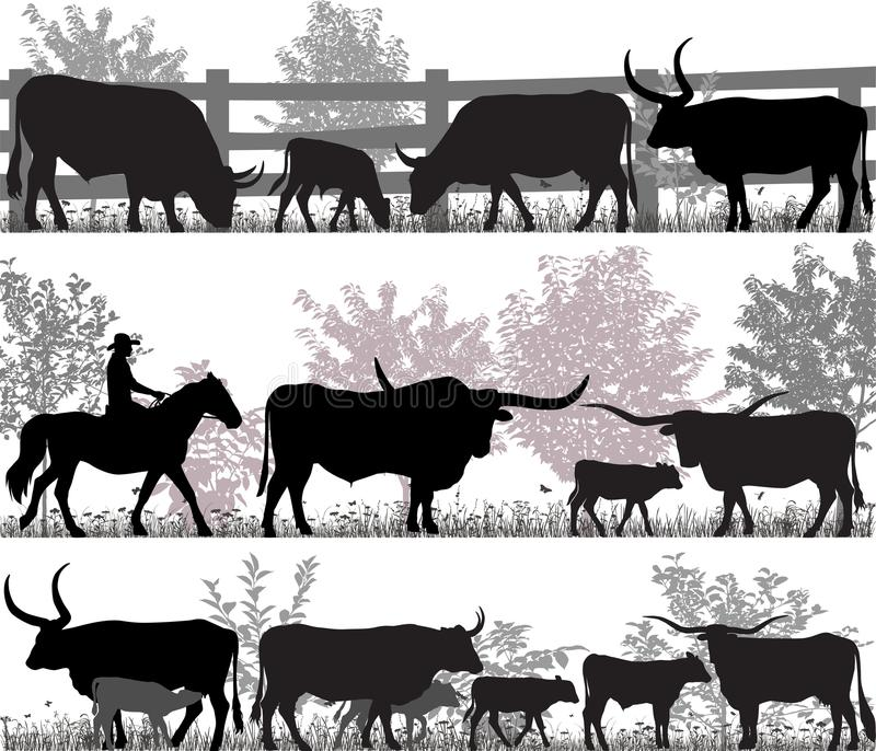 Bétail du Texas Longhorn illustration de vecteur