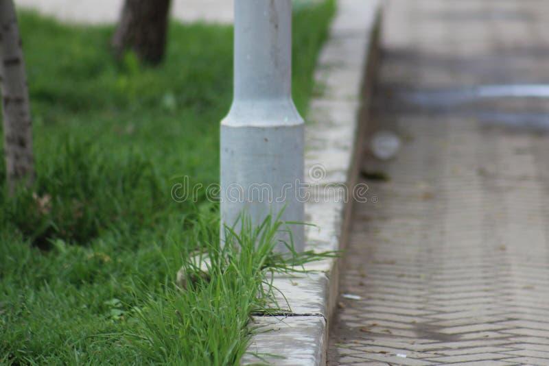 Béton et herbe photographie stock