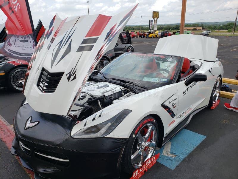 bête faite sur commande chevy de corvette photos libres de droits