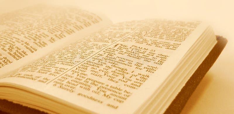 A Bíblia imagens de stock royalty free