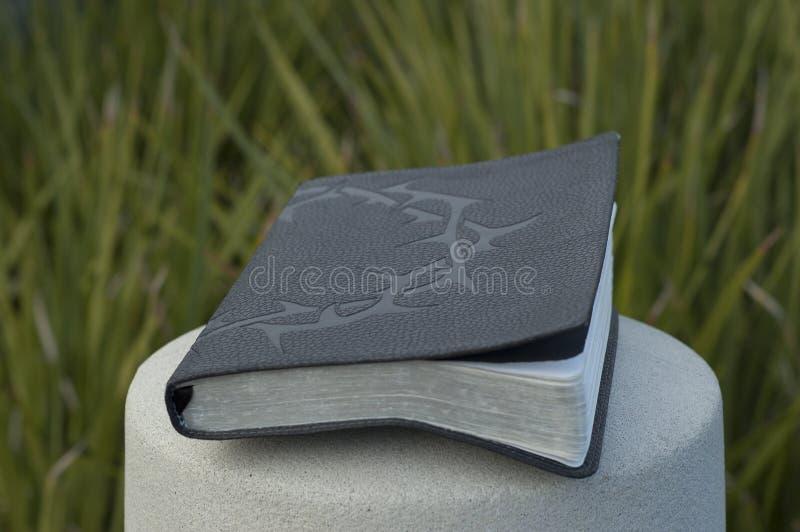 A Bíblia com a coroa de espinhos na coluna do cimento fotografia de stock royalty free