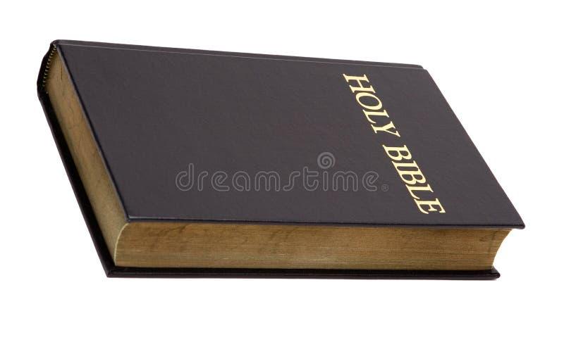 A Bíblia santamente isolada no branco fotografia de stock