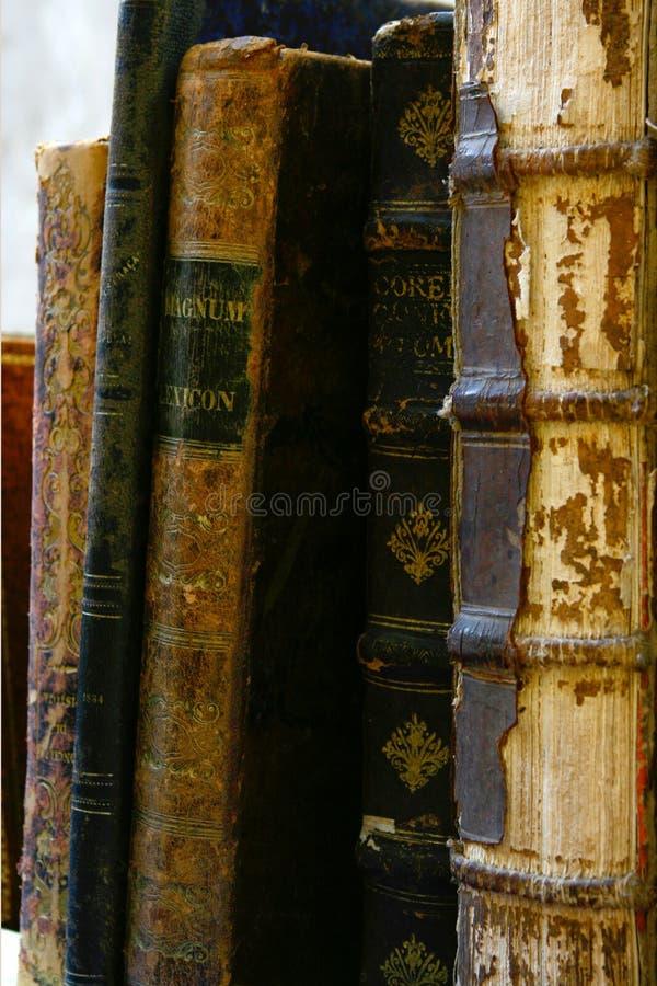 A Bíblia velha de Leatherbound fotografia de stock