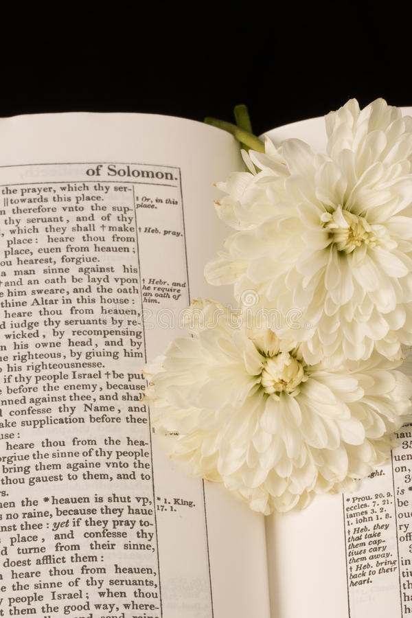 A Bíblia (vista 1) imagens de stock