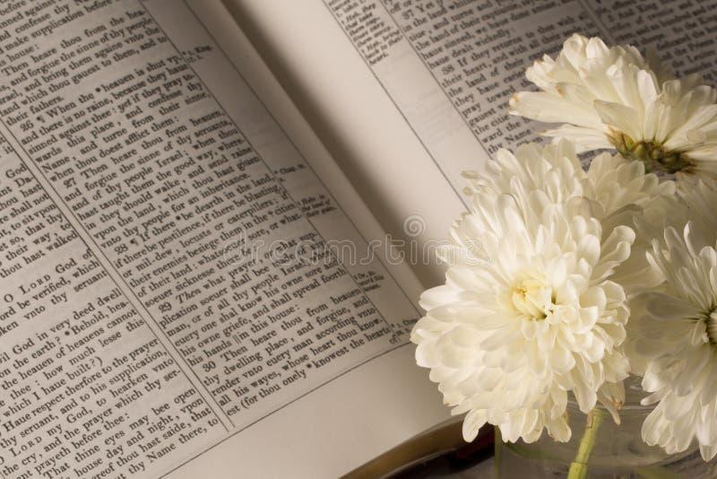 A Bíblia (vista 2) fotografia de stock royalty free
