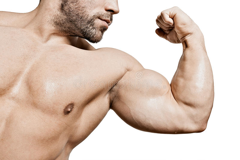 Bíceps del hombre del levantamiento de pesas fotos de archivo libres de regalías
