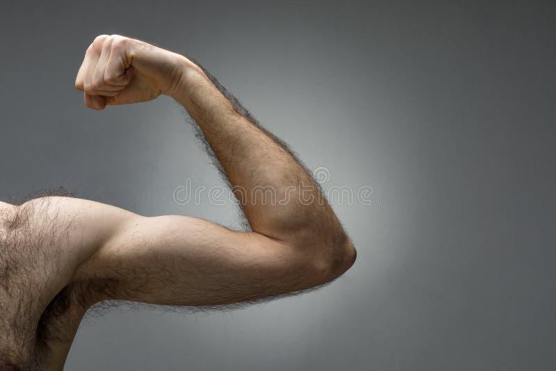 Bíceps melenudo fino imagen de archivo libre de regalías