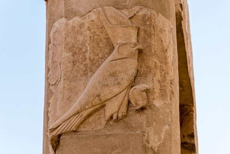 B?g Horus na kolumnie przy wielk? ?wi?tyni? kr?lowa Hatshepsut w Luxor, Egipt fotografia stock