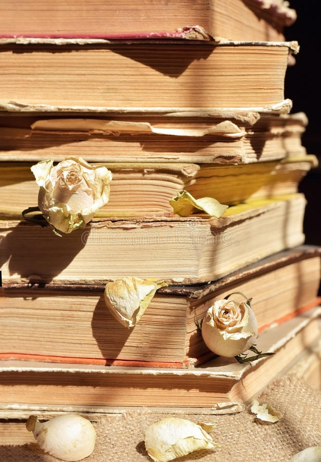 Download Böcker isolerad seriebunt arkivfoto. Bild av information - 76701764