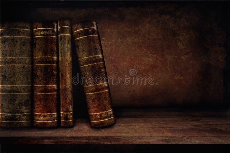 Böcker på en hylla fotografering för bildbyråer