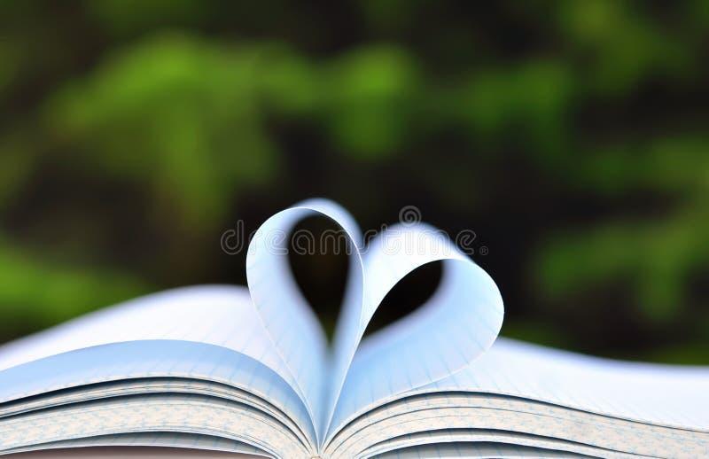 Böcker på tabellen i trädgård med den öppnade överkanten och sidor som bildar hjärta royaltyfri fotografi